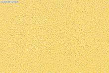 Block Wood used superfine exterior emulsion paint