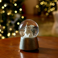 Resin and Glass Snow Water Globe