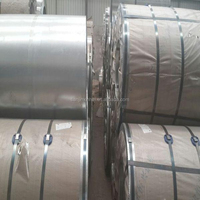 Ppgi Galvanized Steel,Ppgi Ral 9010,Ral 9006 Color Coated Steel Coil