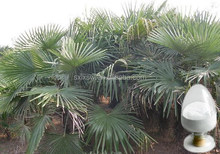 Super quality high-end water soluble saw palmetto extract
