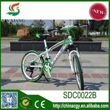 Mini folding MTB bike,20 inch folding MTB bike,double disc brakes