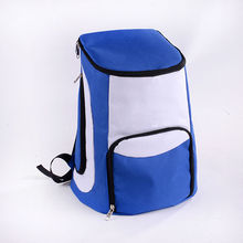 2014 New design hot sale for picnic ladies and man useful cooler bag backpack insulation bag