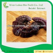 micelio de ganoderma lucidum