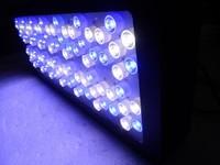 freshwater aquarium 300w lampara para acuario light coral reef used led aquarium lighting
