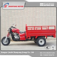 Newly developed motorized cargo tricycle three wheel motorcycle rickshaw tricycle