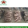 Cold barren resistant hybrid Paulownia Root sapling