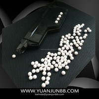 6MM PLASTIC BBS 0.40G AIRSOFT BB PELLETS bullet