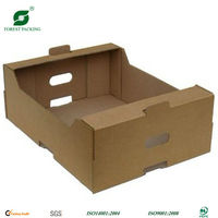 Cheap Fruit/Vegetable Strong Packing/Display Box/Tray