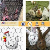 Hot Sale 3/4 inch galvanized Hexagonal chicken mesh