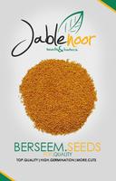 Berseem Clover Seeds