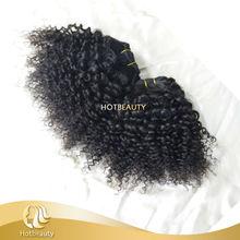 Hot Beauty Hair Brazilian 7A Hair Extension Afro Kinky Hair