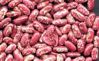 Red Speckled Kidney Beans for sell