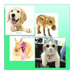 newest worlds smallest pet gps tracker/gps cat tracking collars/with Android and IOS APP gps tracker