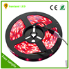 alibaba express factory price 5m 30led/m ip65 led strip light,waterproof rgb 5050 flexible led strips with remote controller