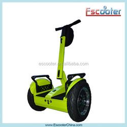 pedal go kart EEC Buggy 2 whee cheap go karts for kids-BUGGY off road go karts for sale
