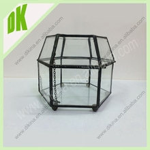 It can be a Table top Terrarium ,jewerly box or Candle Lantern.wholesale Open Geometric Shaped Glass Succulent