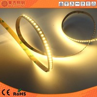 High quality smd 3014 low voltage 24v ultra brightness cheap led led strip 240led/m