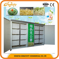 automatic healthy bean sprout machine / soybean machine 500kg