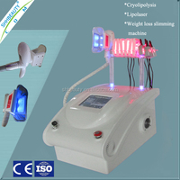 Non-invasive laser liposuction cryolipolysis fat freezing liposuction machine