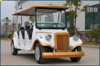 Street Legal electrical automobile with CE Approval DFH-LX8FC