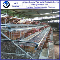 5 tiers 160 birds used poultry cage/African warehouse laying hen cages for export