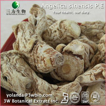Completely Pure Angelica Extract Ligustilide 1%