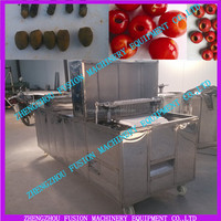 electric cherry pitter/apricot pitter(many kinds equipment for kinds fruits)