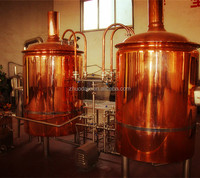 Alcohol Processing Types and Fermenting Equipment,weld and polish Processing Beer Brewing Equipment