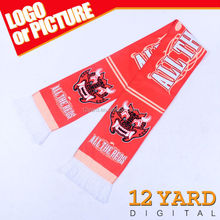 Top sell American style sport team fans pashmina neck scarf cheerleaders fashion long scarf, team member scarf YT-013