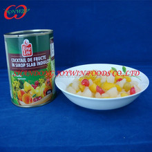High Quality Canned Fruit Cocktail (Mixed Fruit)