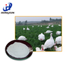 /product-gs/used-containers-for-sale-gentamycin-sulfate-for-animal-health-bp-usp-ep-ex-from-china-supplier-60316592323.html