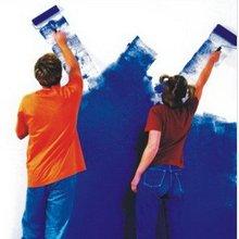 interior exterior acrylic latex wall paint