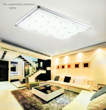 Modern European style fashion LED living room lamps whit ceiling light