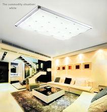 Modern European style fashion LED living room lamps whit ceiling light