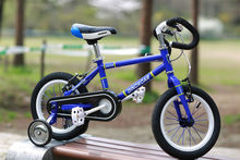 many size blue colour popular steel frame kids bicycles/bikes