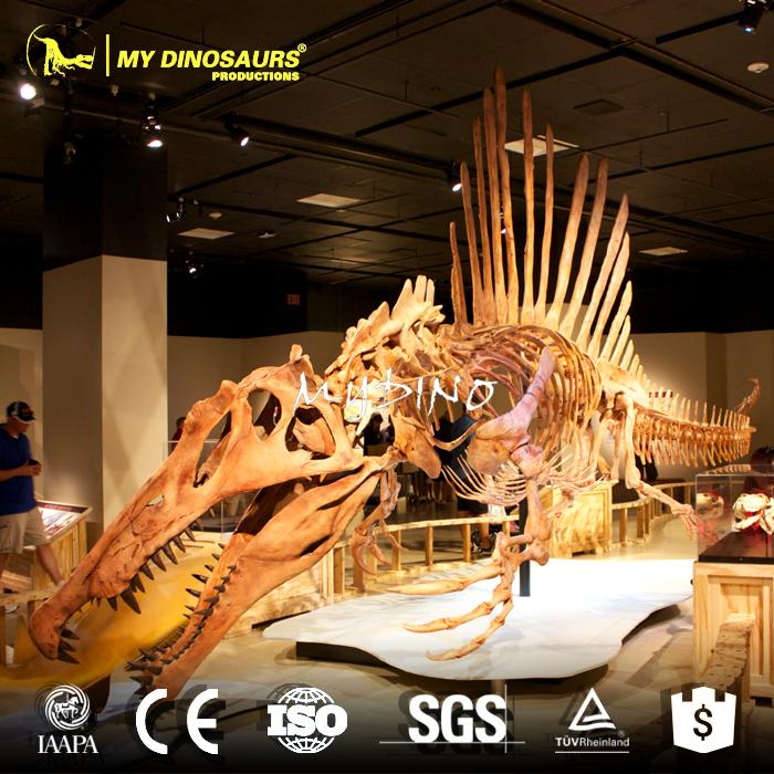 spinosaurus fossil.jpg