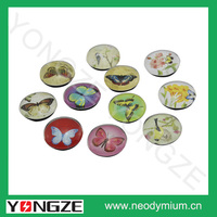 Customized dome crystal glass fridge magnets for sale