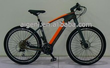 Crank motor carbon fiber frame electric bike e bike