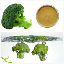 High Quality Broccoli powder Lowest Price Hot Sales Fast Delivery STOCK!!!!!!