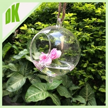 DIKINA ~~ CUSTOM SIZE&SHAPES ACCEPTED~~ dia at 6, 8,9 10,12, 16, 18, 20, 22 .....avaible wholesale custom round terrarium glass