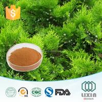 10:1,20:1 Organic Cacumen Platycladi extract/Cacumen Platycladi Orientalis Extract Powder for Tranquilize the nerves