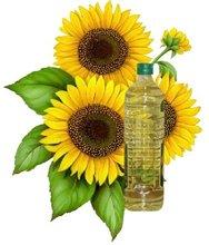Sunflower Seed Oil Refining Machine