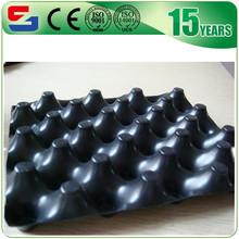 HDPE resistance waterproof board, roof garden drainage board