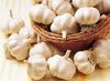 jinxiang fresh white garlic