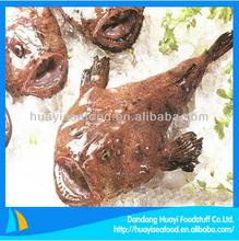frozen fine great wholesale monkfish deliver faster exporter