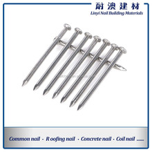 HOT SALE common nails/common iron wire nail used for wooden nail