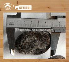 iqf tuber indicum in vacuum bag Frozen Black Truffle Tuber indicum