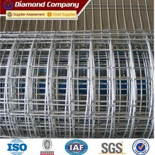 Hot dipped 2x2 galvanized Stainless Steel welded wire mesh/for breeding animals welded wire mesh