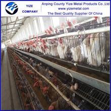 battery chicken layer cage sale for pakistan farm(best seller in kenya , Uganda , Zimbabwe and Nigeria)