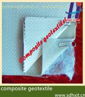composite geotextile